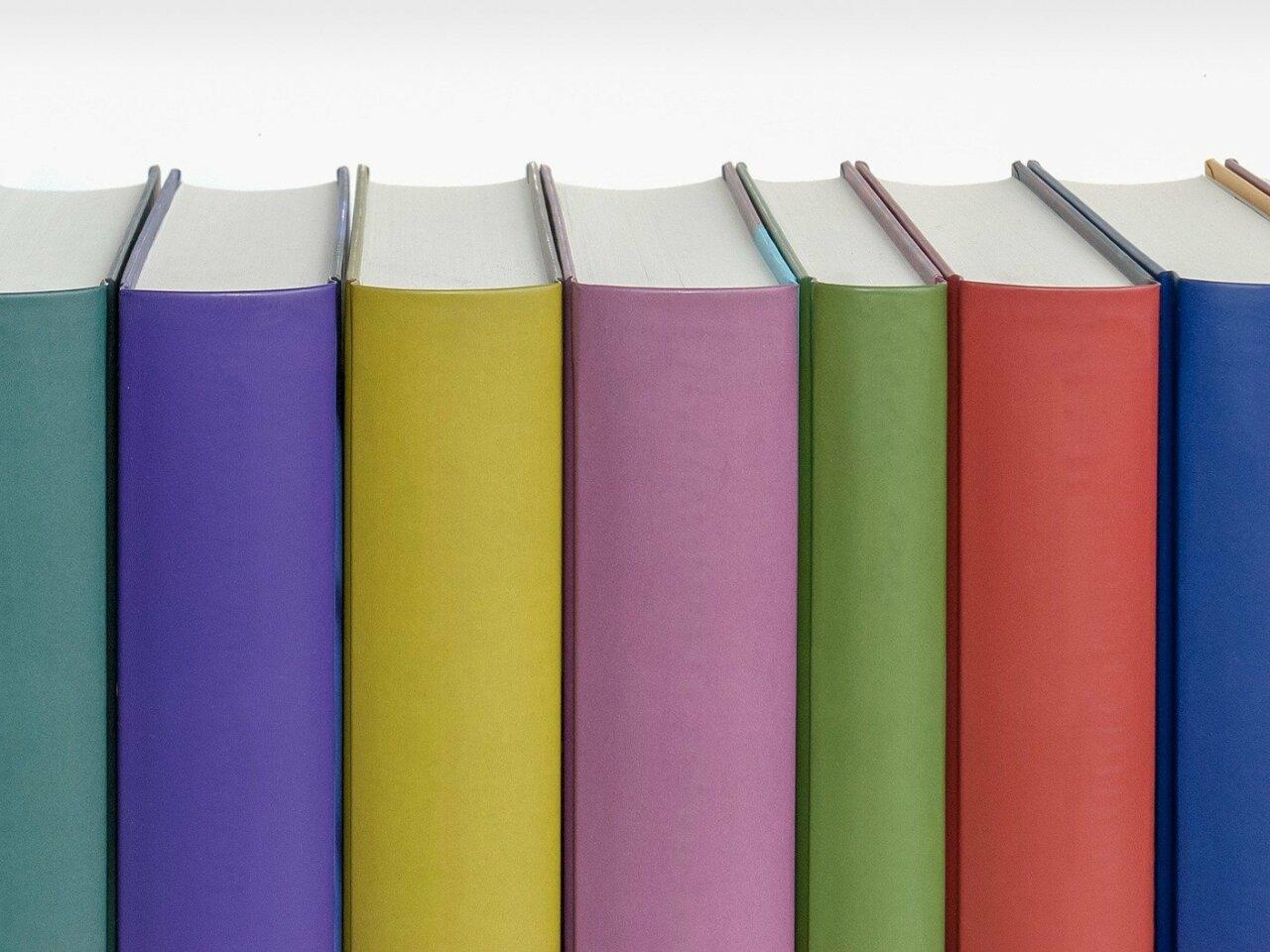 Literacy Minnesota Newsletter: Board Member Spotlight on Karin Goettsch